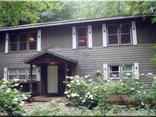 A Dream of a Woodland House. Late August specials. - Diamond Point vacation rentals