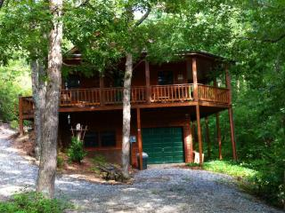 Escape to the BEAUTIFUL COOL MOUNTAINS in North Georgia - North Georgia Mountains vacation rentals