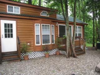 Luxury Lodge near Six Flags Jackson NJ - Jackson vacation rentals