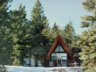 Black Hills Hideaway Cabin by Rochford, Lead - Rochford vacation rentals