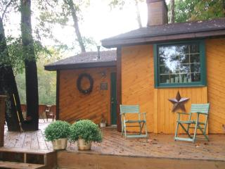 ADORABLE CABIN ON CHESTATEE RIVER - Dahlonega vacation rentals