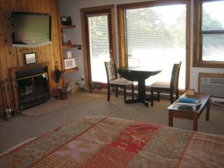 Cozy Inn Suite - fire place, jacuzzi, dog friendly - West Virginia vacation rentals