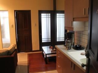 $30 Value Condominium - Makati vacation rentals