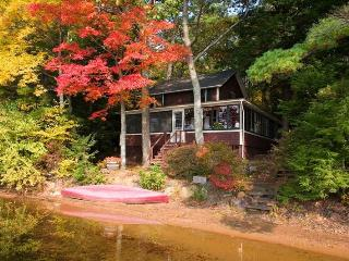 lakeside cottage in quiet setting on lovely lake - Rochester vacation rentals