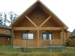 Vacation Log Cabin Style Villa Warrens, Wisconsin - Tomah vacation rentals