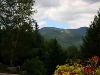 4-bedroom Waterville Valley townhouse - Glen vacation rentals