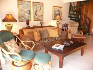 Tropical South Maui Townhouse: A/C, WIFI, Pool - Kihei vacation rentals