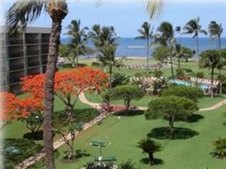 Beach and oceanfront condo!  3 bedrooms, 3 baths - Kihei vacation rentals