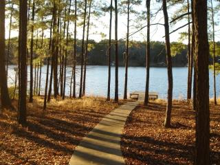 Beautiful Lake House for Rent - Hawkins vacation rentals