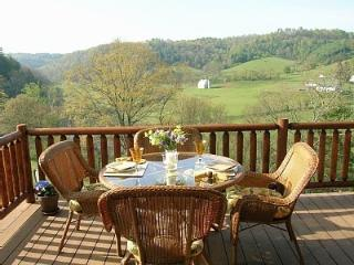 Hillsville Area (Dugspur) Vacation Rental cabin - Hiwassee vacation rentals