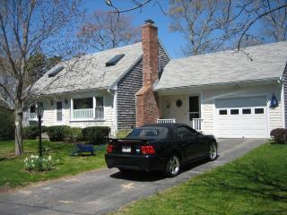 Falmouth on Cape Cod Next to the Water - Falmouth Heights vacation rentals