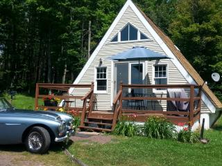 Cozy Catskill Cottage- Secluded Acres, Mt. Views - Stamford vacation rentals