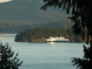 San Juan Island Water View Home - Friday Harbor vacation rentals