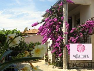 Villa Rosa Apartments for 2 - Rovinj vacation rentals