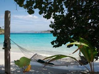 Luxury Villa on a Private Beach.. - Peter Bay vacation rentals