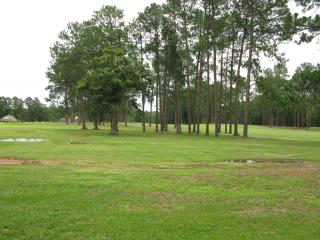 Modern, Upscale, Spacious Home on HLR Golf Course - Hawkins vacation rentals