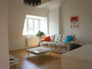 Nice roof-top 2 bedroom apartment - Vienna vacation rentals