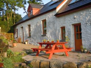 An Ti Glas,  Eco Cottage - Ennis vacation rentals