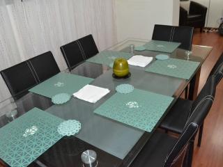 Apartment near San Isidro - Lima vacation rentals