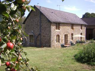 B&B La Cloue Mayenne/Normandy National Park - Lassay-les-Chateaux vacation rentals