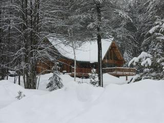 Awesome Adirondack Log Cabin with 80 Acres to Play - Bolton Landing vacation rentals