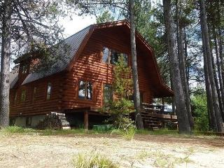 Dawn Lakeside Log Cabin - Donnelly vacation rentals