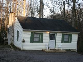 Cozy Cabin, propety adjoining Burr Oak State Park - Malta vacation rentals