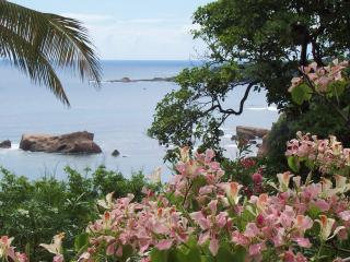 Sea Cliff Cottage #4 - Calibishie vacation rentals