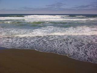 Where the Ocean Meets the Sky - San Francisco vacation rentals