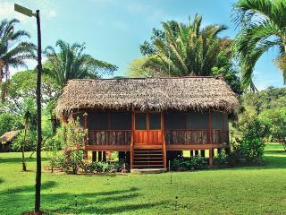 Jungle Adventure, Wildlife and Waterfalls - Hopkins vacation rentals