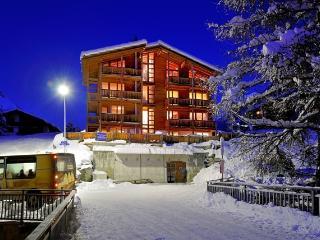 Z'Wichjehues Dachwohnung - Zermatt vacation rentals