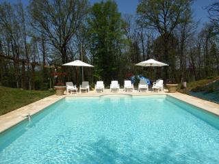 LE PECH DE ROSE - Les Eyzies-de-Tayac vacation rentals