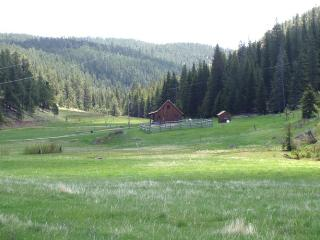 LONE SPRUCE RANCH - Rochford vacation rentals
