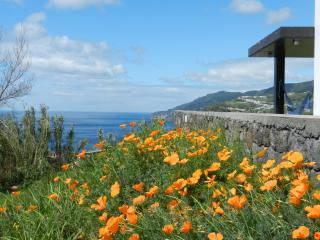 B&B in a nature's paradise (AL) - Ponta Delgada vacation rentals