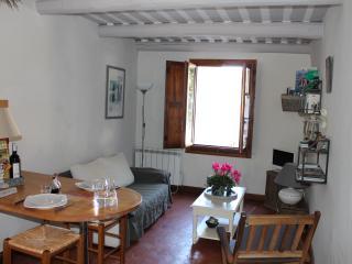 Le soleil du Luberon - L'Isle-sur-la-Sorgue vacation rentals