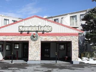 2BR Slopeside, Ski in/ Ski Out, Great Ski Get Away - Snowshoe vacation rentals