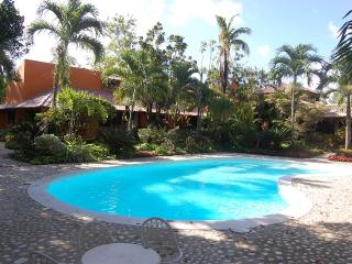 Beach Access Ocean Front Mahogany Beach House - Rio San Juan vacation rentals
