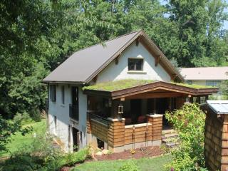 Eco-Awesome Modern Nauhaus, Walk to Town - Asheville vacation rentals