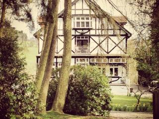 Pinewood Manor - Healey vacation rentals