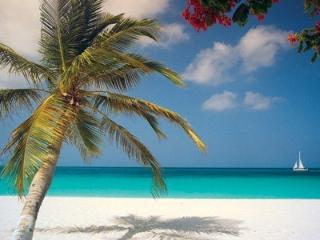 SERENITY - Eagle Beach vacation rentals