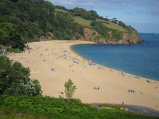 Dartmouth South Devon holiday chalet - Dartmouth vacation rentals