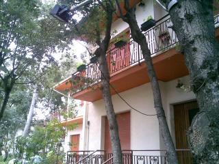 Tuscan cottage-Castiglioncello - Castiglioncello vacation rentals