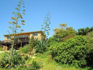 Starfishsurf apartment - Jeffreys Bay vacation rentals