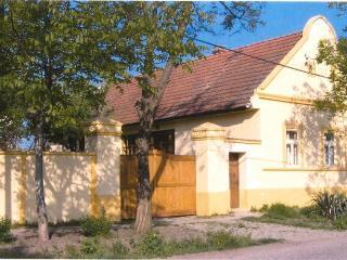 Serbia Village Farmhouse - Stara Moravica vacation rentals