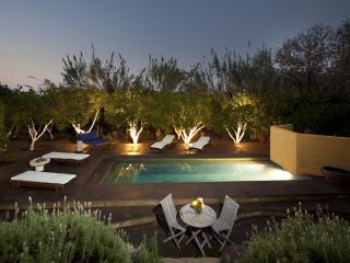 Iassus, pool, garden, seaviews - Gokcebel vacation rentals