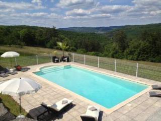Mansion House near Sarlat Dordogne Perigord - Castelnaud-la-Chapelle vacation rentals