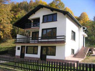 Villa Ritsa - Ribaritsa vacation rentals