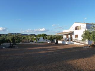 EL OLIVAR DE ALBARIZAS - Ciudad Real vacation rentals