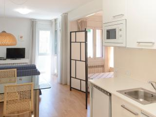 Studio Apt in La Massana - La Massana vacation rentals