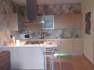Flat West Padua - Padua vacation rentals